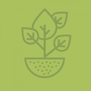 Bodemleven en wortelgroei stimuleren