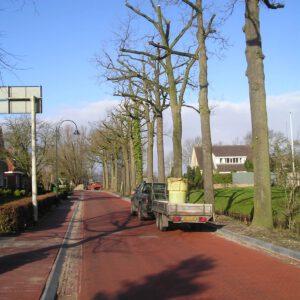 Compostthee bodemverbetering bomen Stedelijk Groen bv